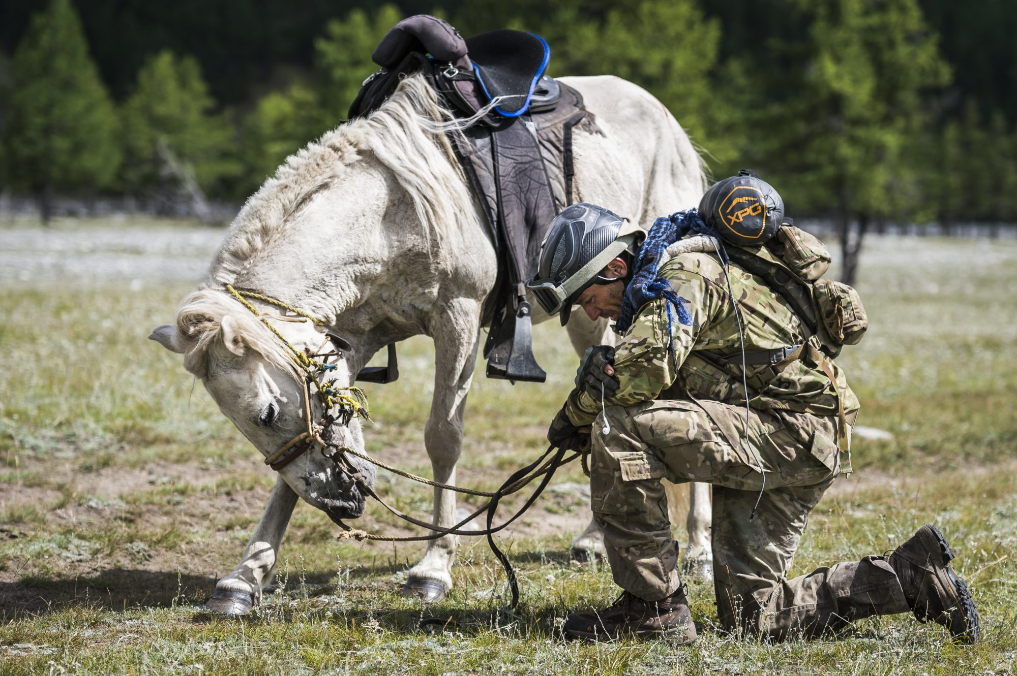 Capt Finley kneels in prayer with his horse at the Mongol Derby finish line.