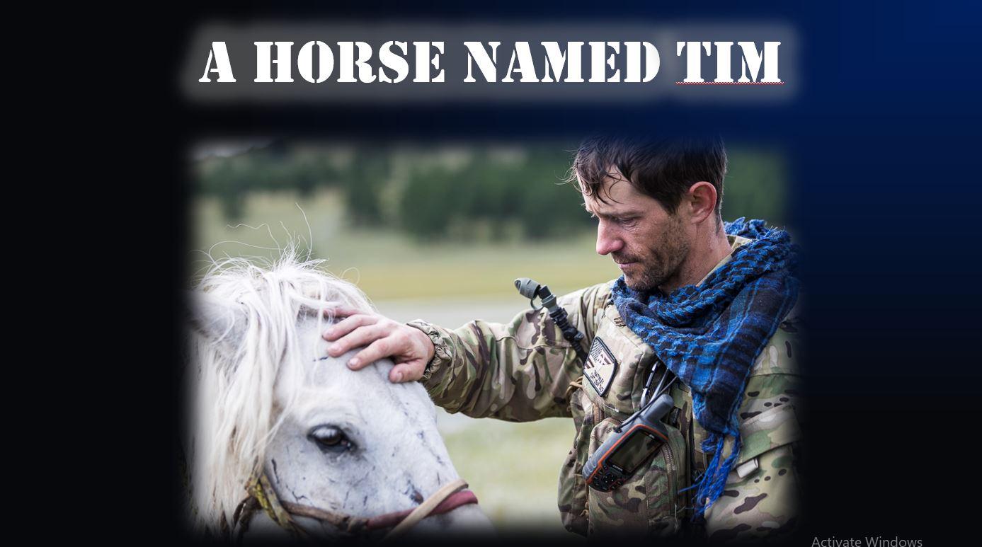 A Horse Named Tim